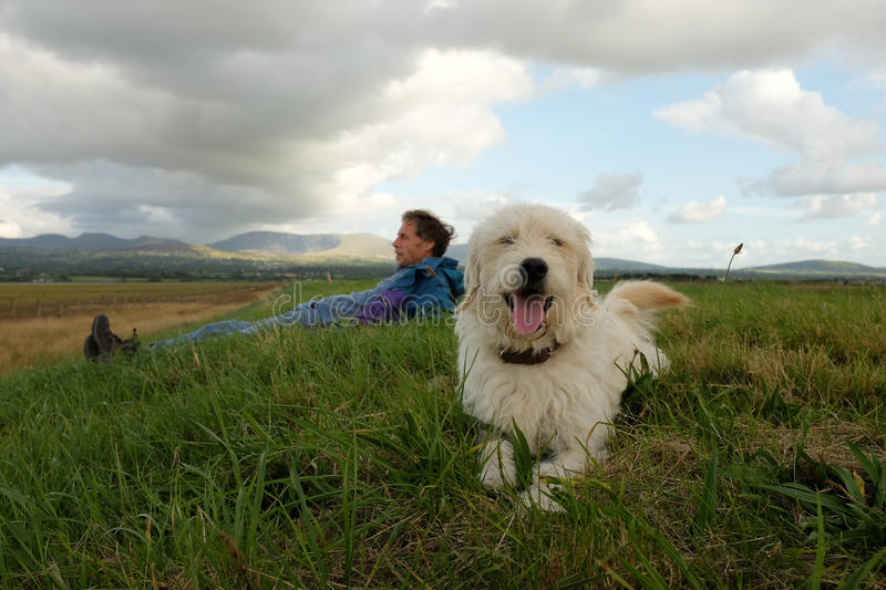 Labradoodle and owner. royalty free stock image