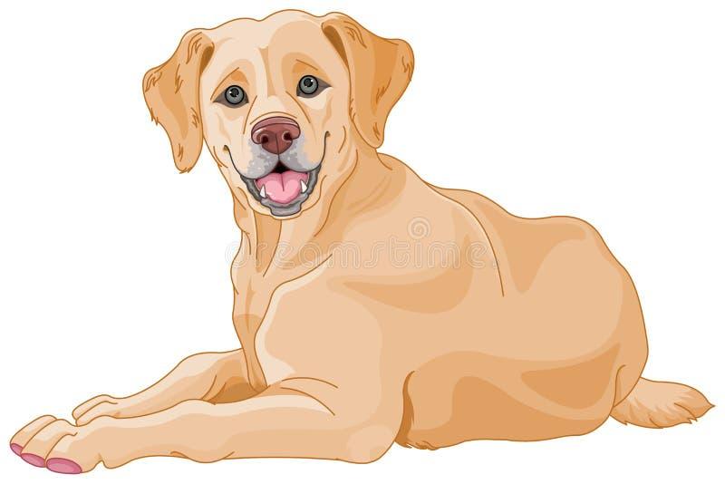 Labrador stock de ilustración