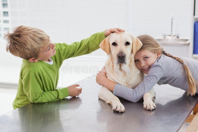 Labrador bonito com seus proprietários fotografia de stock royalty free