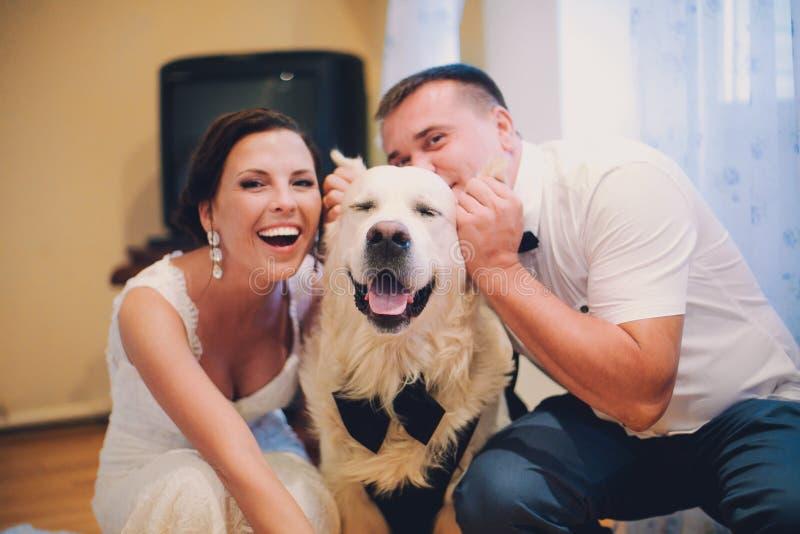 Labrador die terwijl familie het spelen met hem, selectieve nadruk glimlachen stock afbeeldingen