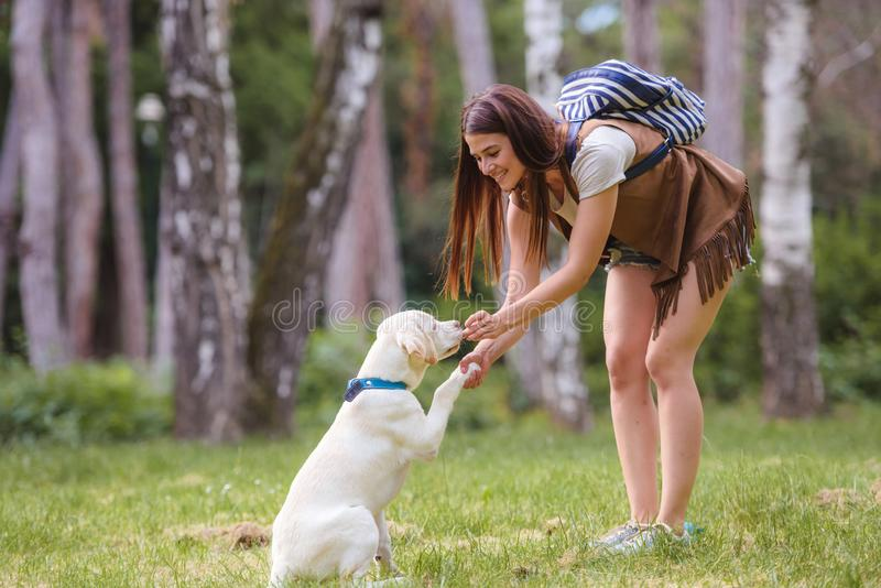 Beautiful young woman playing with a puppy labrador in the park royalty free stock images