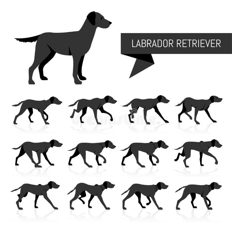 Labrador vectorsilhouetten vector illustratie