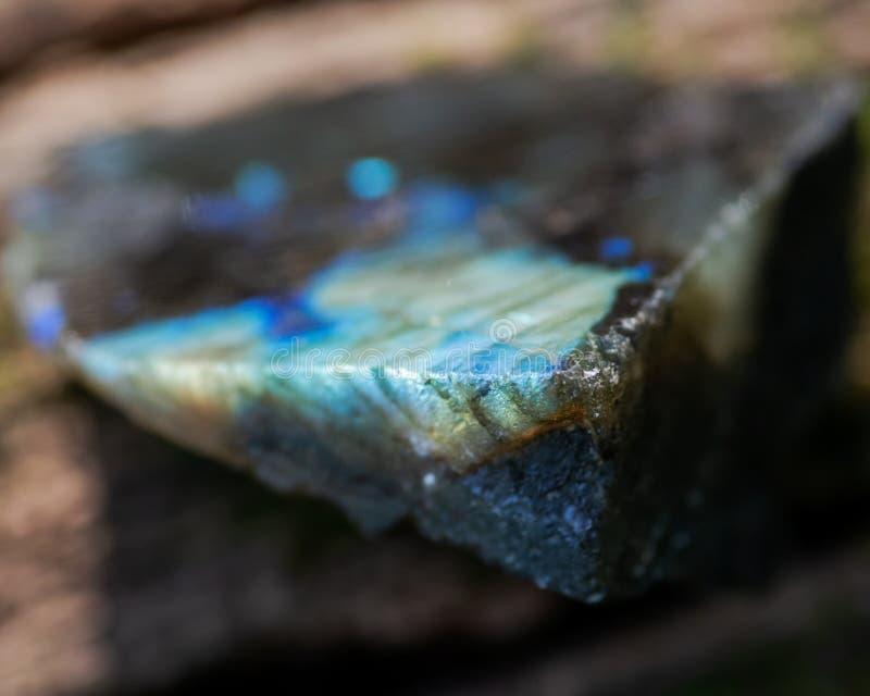 Labradorite parcialmente lustrada natural de Madagáscar em uma casca de árvore na floresta fotos de stock