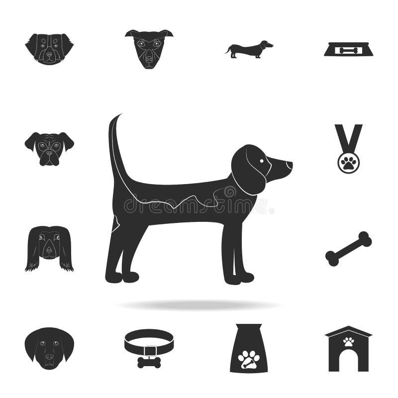 Labradorsymbol Detaljerad uppsättning av hundkontursymboler Högvärdig grafisk design En av samlingssymbolerna för websites, royaltyfri illustrationer