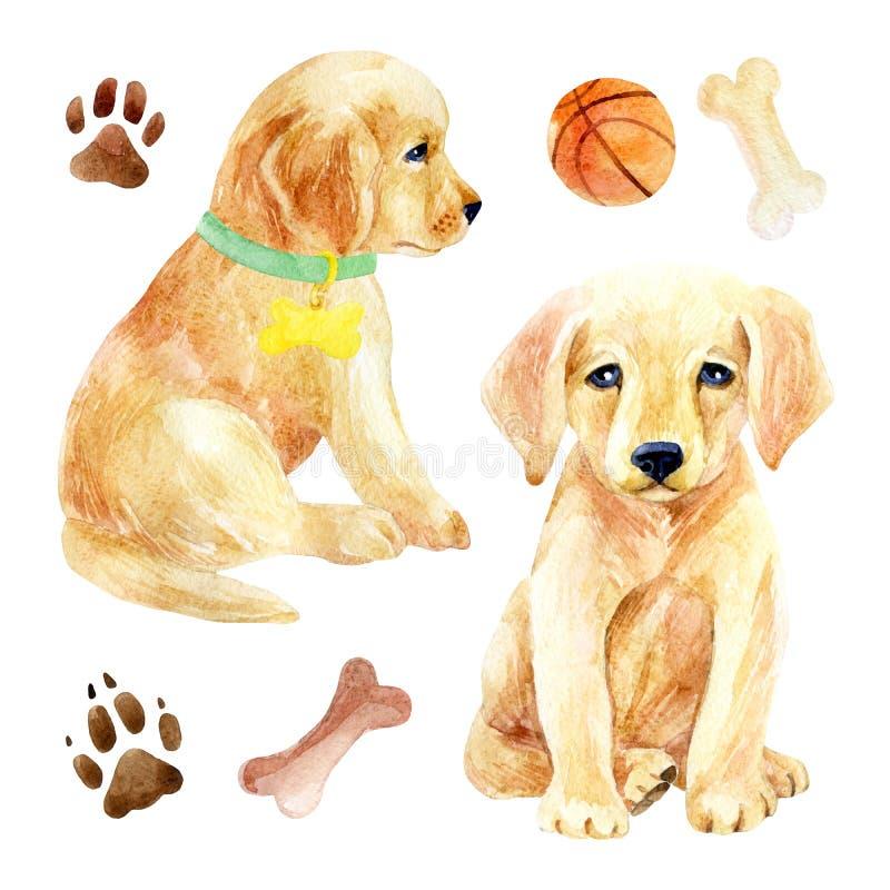 Labradorvalpuppsättning royaltyfri illustrationer