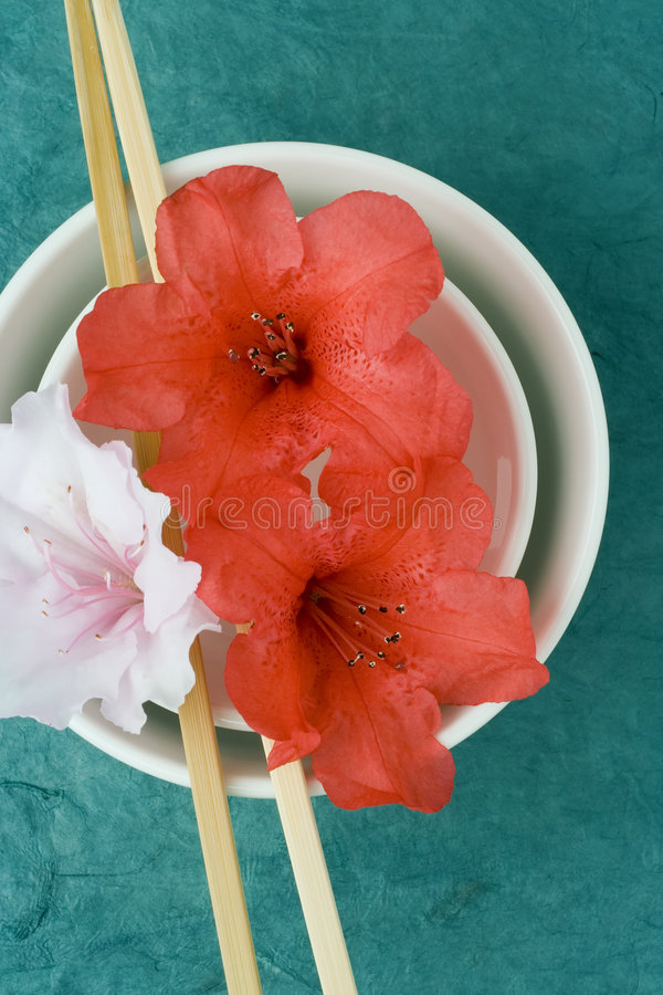 Labrar serie; azaleas, tazones de fuente de arroz, de arriba fotos de archivo libres de regalías