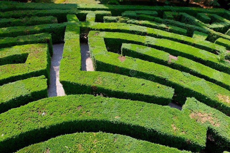 Labyrinten av förälskelselabyrint parkerar villan Pisani, Stra, Veneto, Italien arkivfoton
