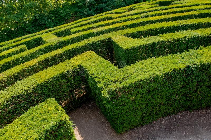 Labyrinth in royalty free stock photo