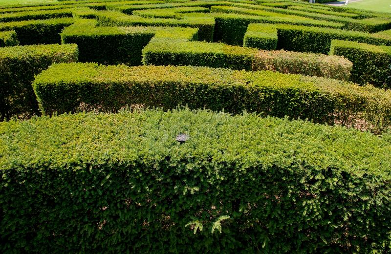 Labyrinth in sigurta stock image