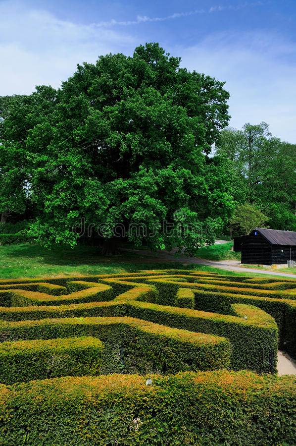 Labyrinth of Leeds Castle royalty free stock photos