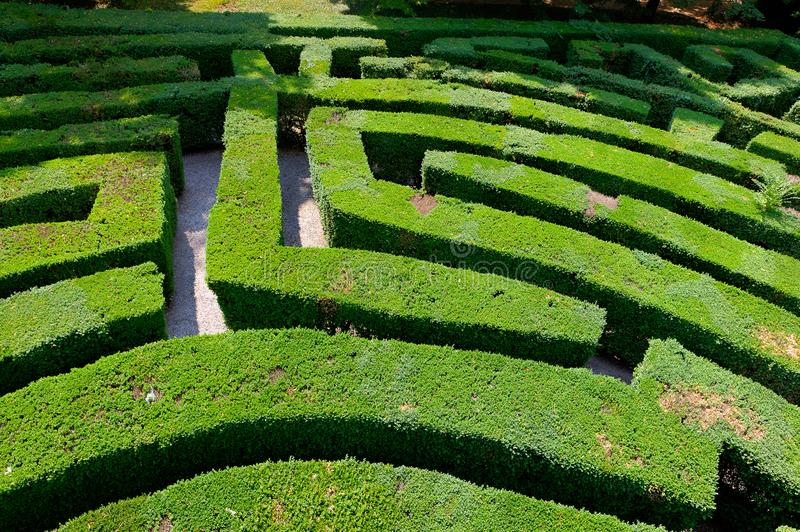 Labyrinth of Love maze park Villa Pisani, Stra, Veneto, Italy. Labyrinth of love or maze made by hedges in the park of the baroque Palladian villa or palace in stock photos