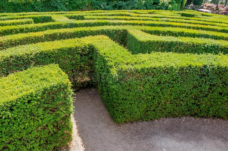 Labyrinth in sigurta stock photography