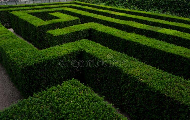 Labyrinth und Labyrinth im Schonbrunn-Palastgarten lizenzfreie stockfotos