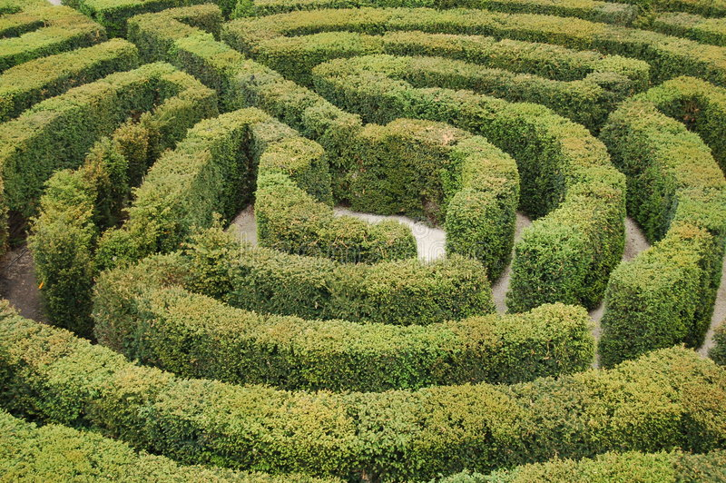 Labyrinthe image stock