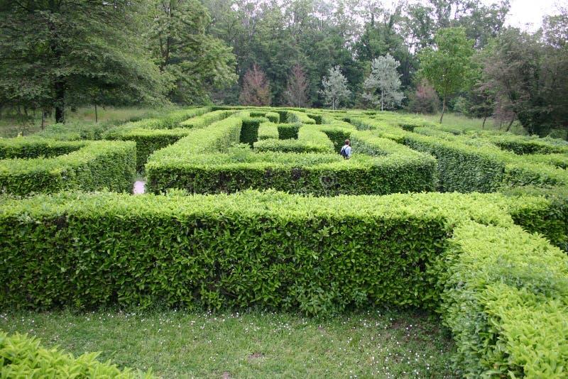 Labyrinthe photos stock