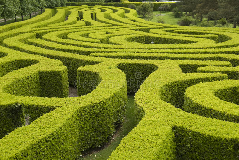 Labyrinthe anglais de jardin de pays photo libre de droits