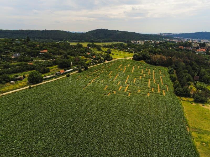 Labyrinthe d'événement dans le champ de maïs à Brno-Komin de République Tchèque ci-dessus et photos libres de droits