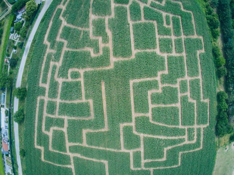 Labyrinthe d'événement dans le champ de maïs à Brno-Komin de République Tchèque ci-dessus et image stock