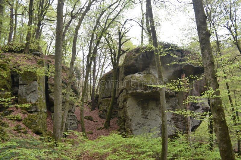 Labyrinthe de forêt et de roches images stock