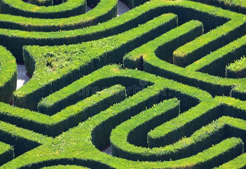 Labyrinthe de haie d'en haut photo stock
