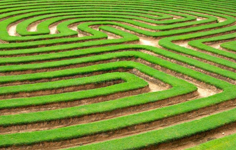 labyrinthe de pelouse ou de jardin d'herbe   images stock