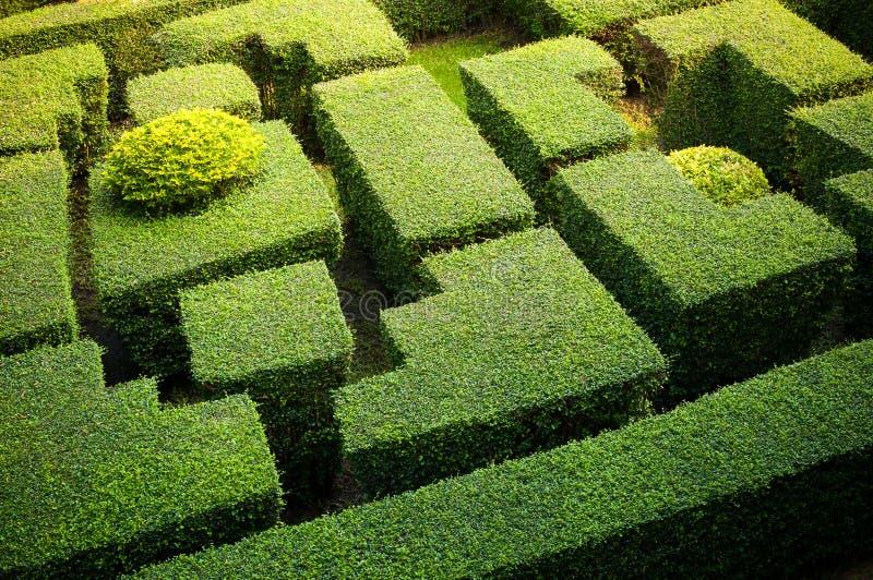 Labyrinthgarten stockfoto