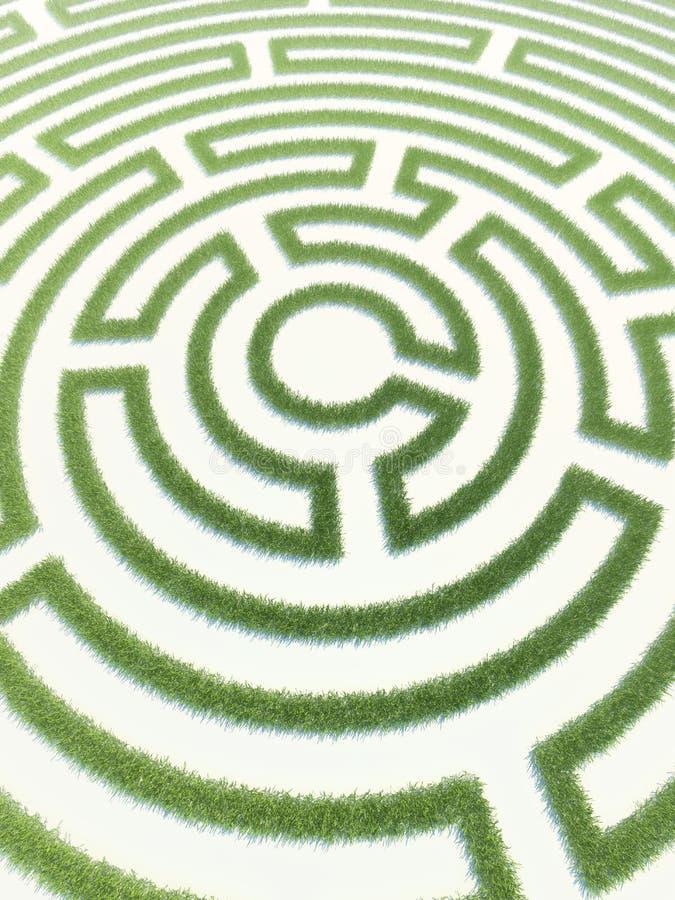 Labyrinthgras stockfotografie