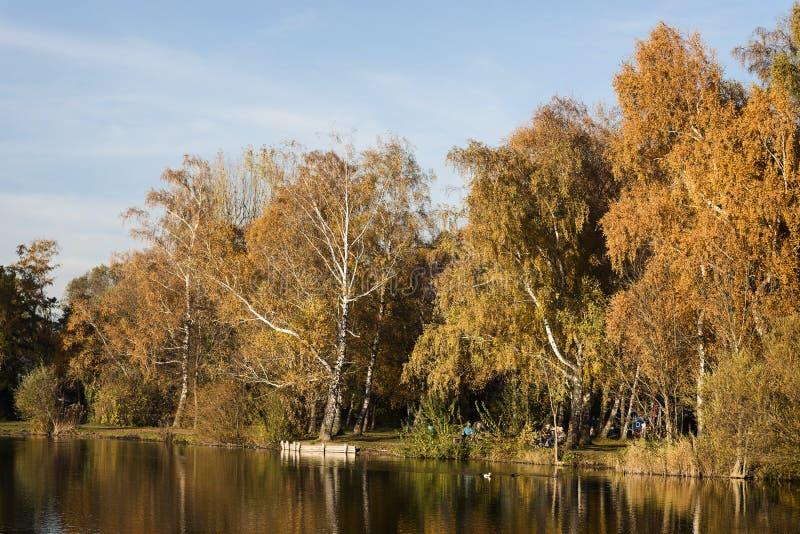 Lac à la soirée en automne photos libres de droits