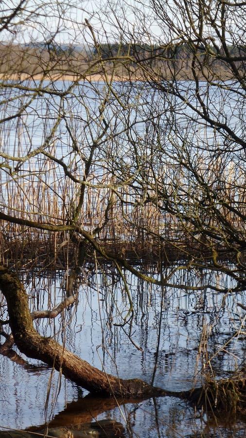 Lac photos libres de droits