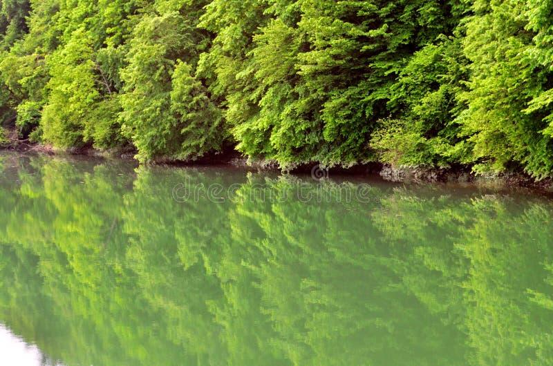 Download Lac photo stock. Image du réflexion, pêche, poissons - 56483168