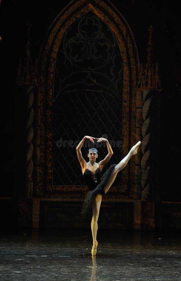 Lac adulte swan de cérémonie-ballet de cygne noir de prince sinistre d'Ogi Lia-The image stock