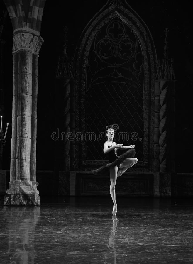 Lac adulte swan de cérémonie-ballet de cygne noir de prince sinistre d'Ogi Lia-The photo libre de droits