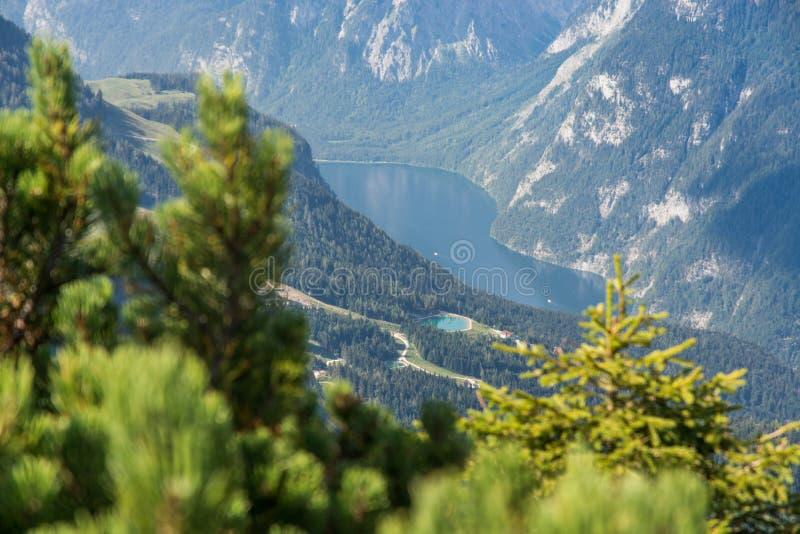 Lac alpin Königsee en Allemagne par les arbres photo libre de droits