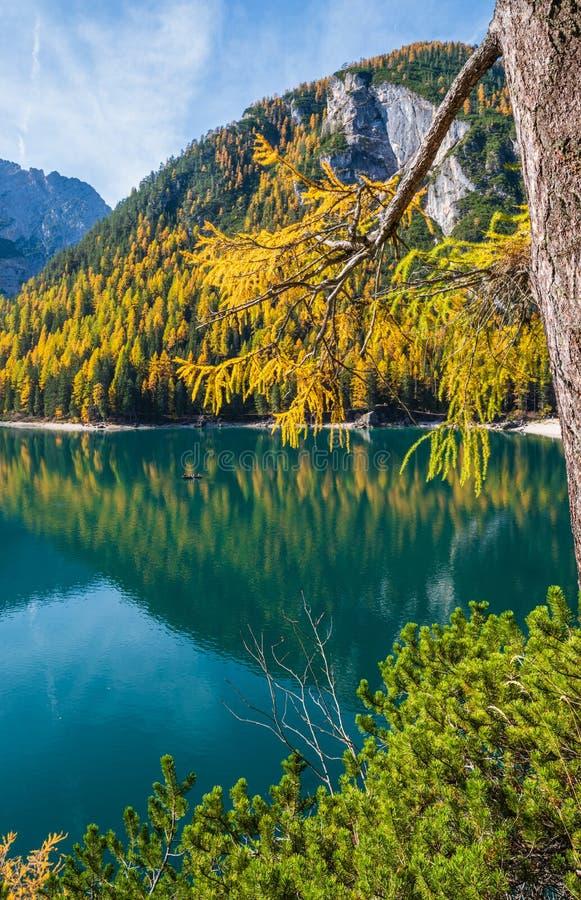 Lac alpin paisible d'automne Braies ou Pragser Wildsee Parc national de Fanes-Sennes-Prags, Tyrol du Sud, Alpes des Dolomites, It image libre de droits