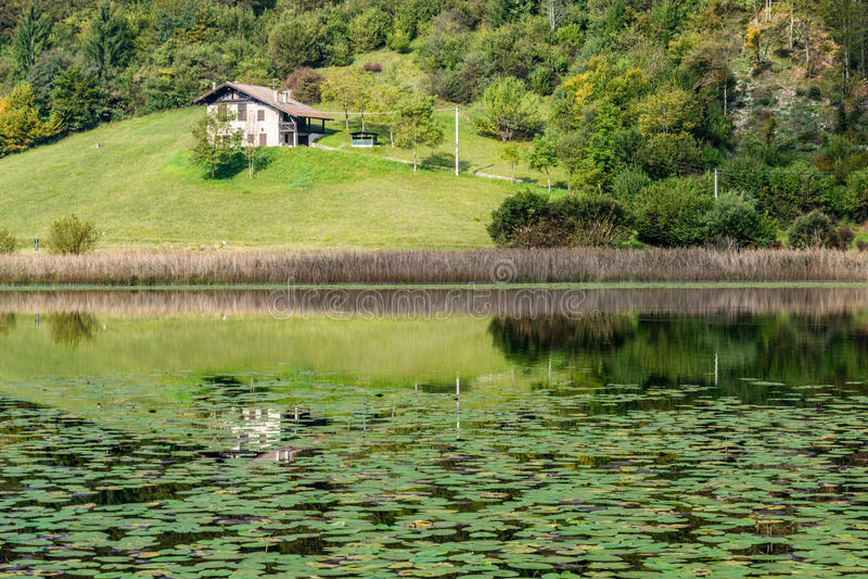 Download Lac Ampola image stock. Image du marche, vallée, forêt - 45357409