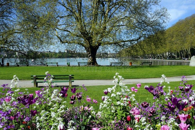 Lac annecy, fleurs et ville, Savoie, France photographie stock