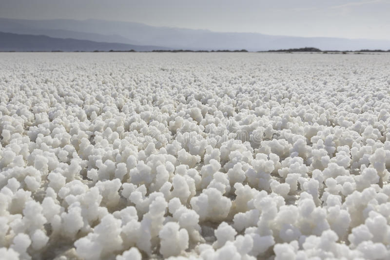 Lac Asal Djibouti. Lac Asal salt crystals around the lake, Djibouti, East Africa royalty free stock photos