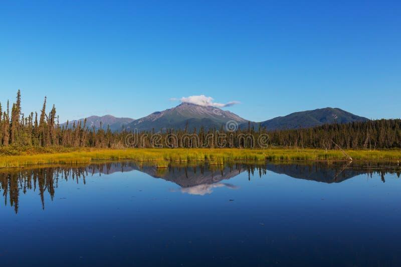 Download Lac au Canada image stock. Image du north, pittoresque - 76076415