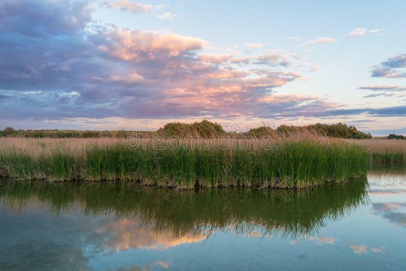 Lac au coucher du soleil en parc national Tablas De Daimiel Ciudad r?el l'espagne images stock