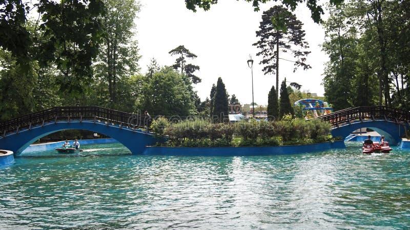 Lac au milieu du parc image libre de droits