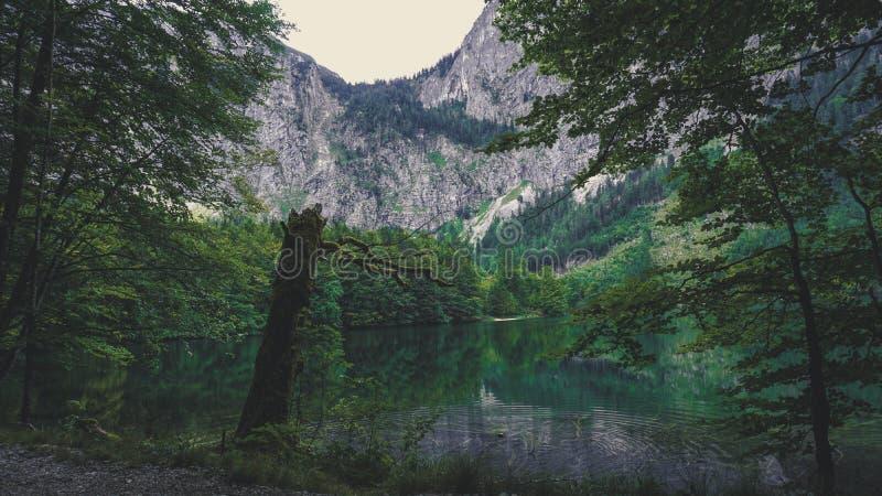 Lac autrichien - été photo stock