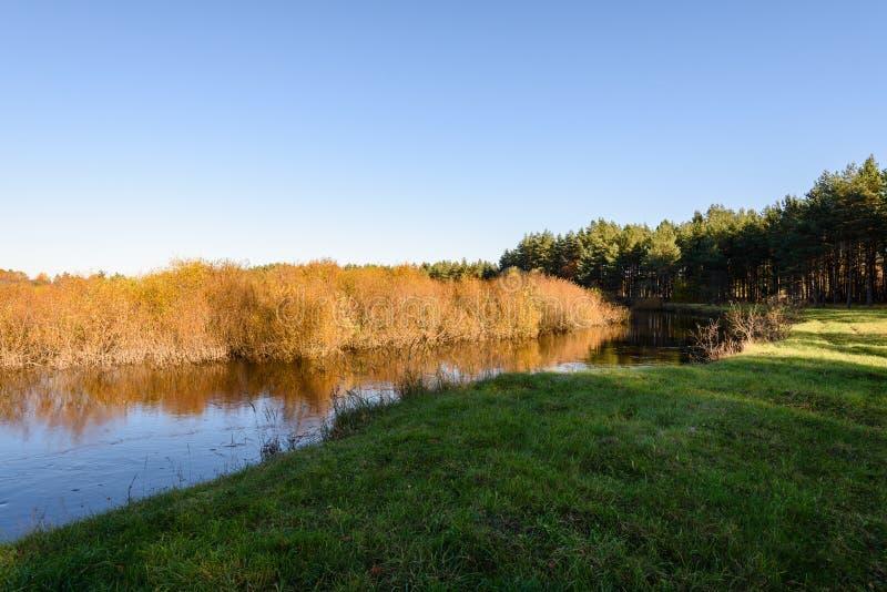 lac avec des réflexions de l'eau dans le jour coloré d'automne avec coloré photos stock