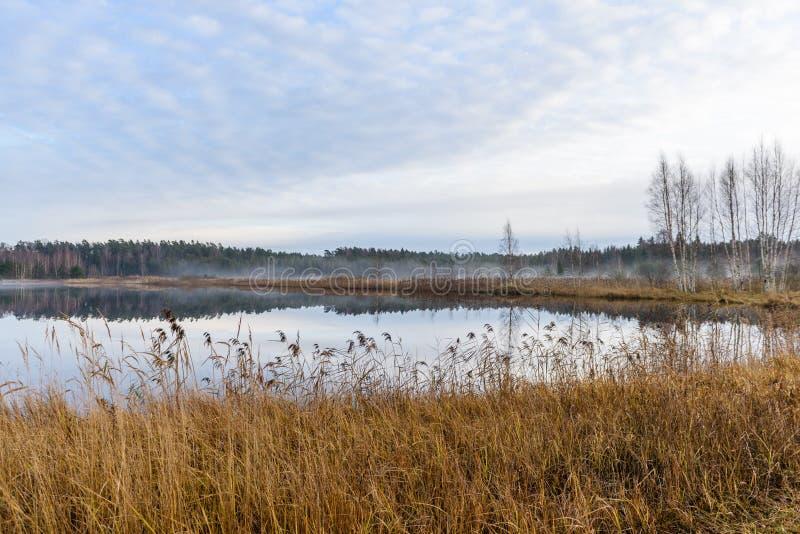lac avec des réflexions de l'eau dans le jour coloré d'automne photo libre de droits