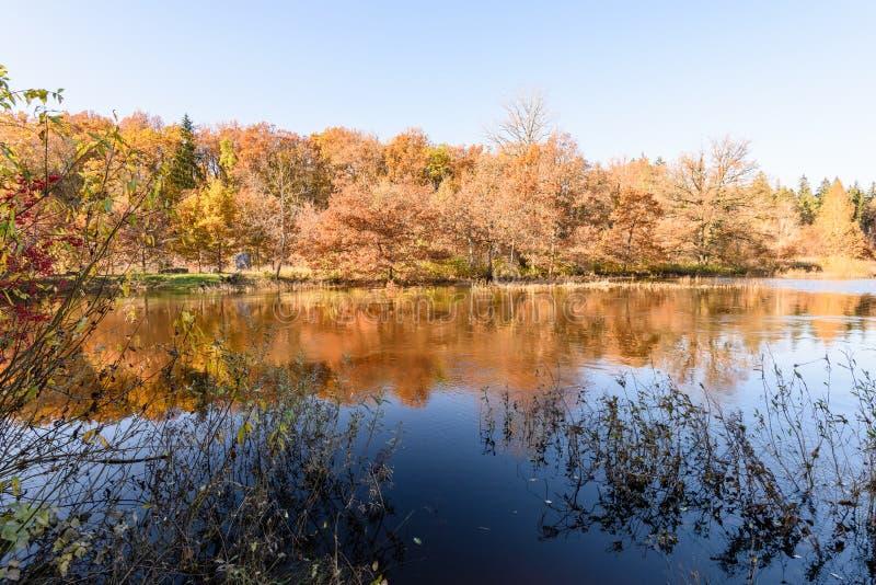 lac avec des réflexions de l'eau dans le jour coloré d'automne avec coloré photographie stock