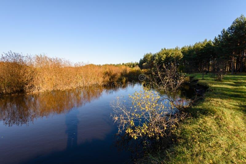 lac avec des réflexions de l'eau dans le jour coloré d'automne avec coloré image libre de droits