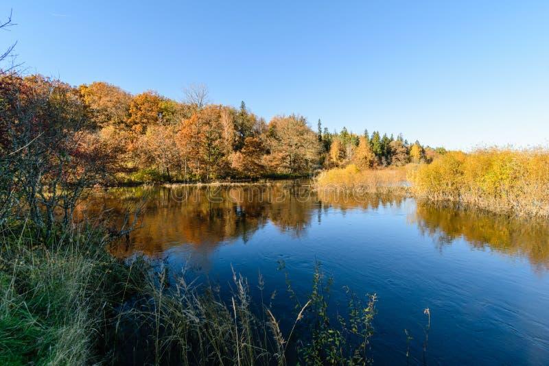 lac avec des réflexions de l'eau dans le jour coloré d'automne avec coloré images stock