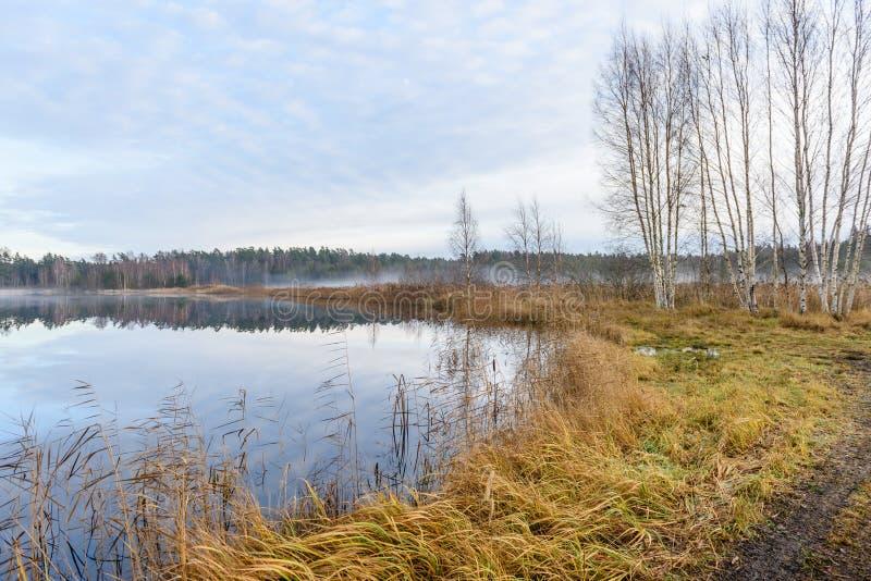 lac avec des réflexions de l'eau dans le jour coloré d'automne image libre de droits