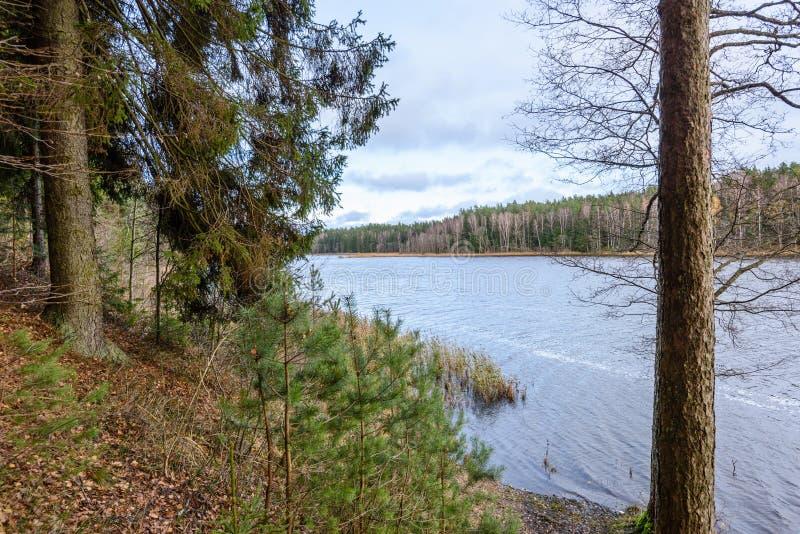 lac avec des réflexions de l'eau dans le jour coloré d'automne photos libres de droits