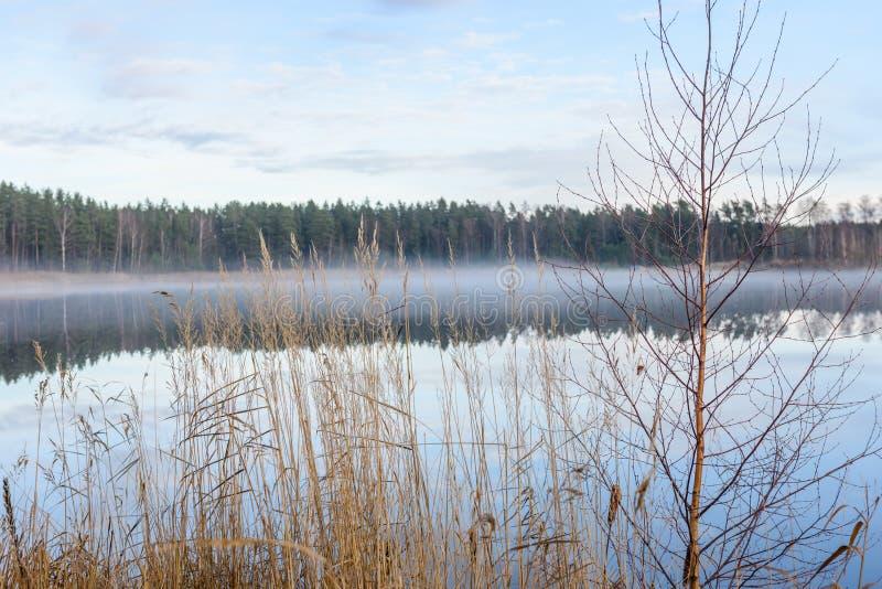 lac avec des réflexions de l'eau dans le jour coloré d'automne photographie stock