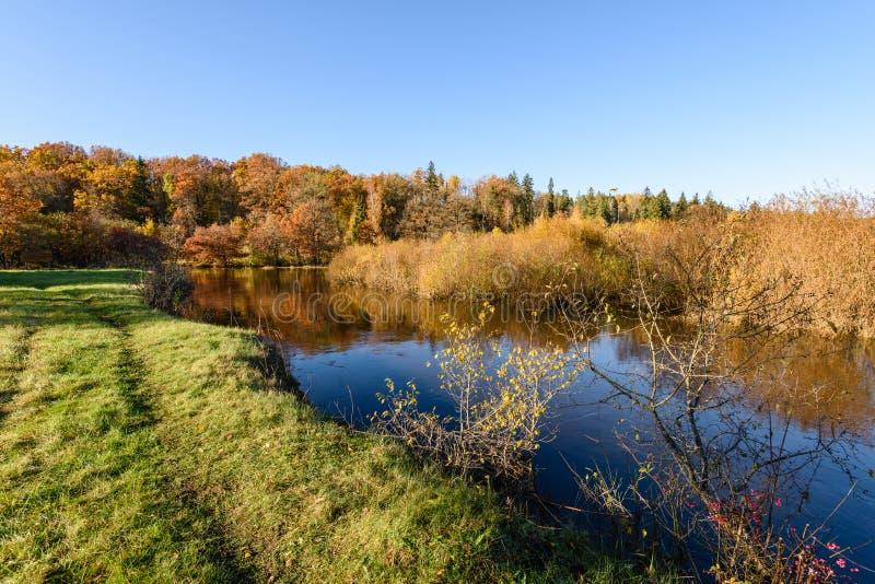 lac avec des réflexions de l'eau dans le jour coloré d'automne avec coloré photographie stock libre de droits